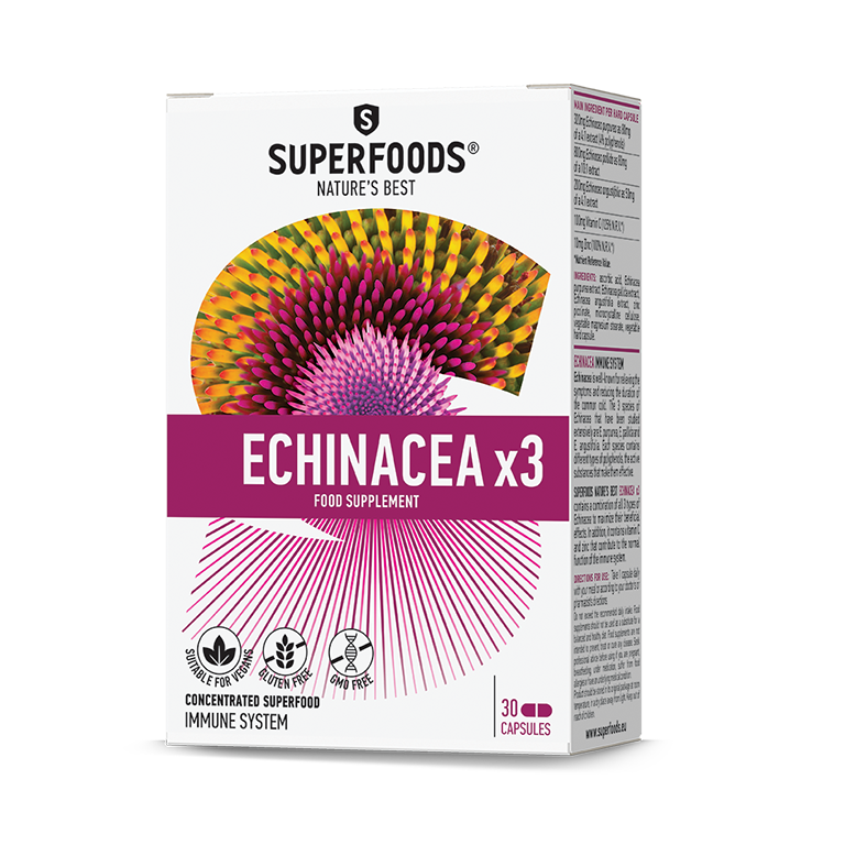 Ecinacea x3